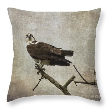 Are You Finished Throw Pillow