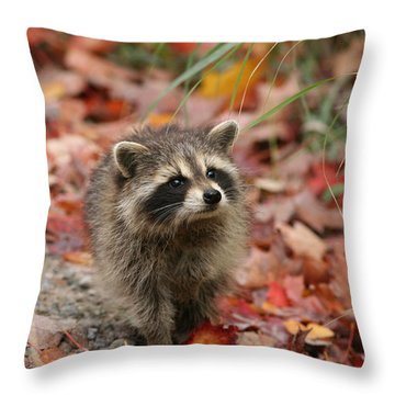 Are You My Mother Throw Pillow