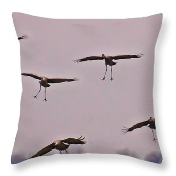 Throw Pillow featuring the photograph Are You Sure This Is The Spot by Don Schwartz