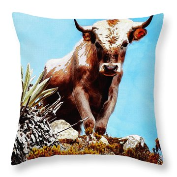 Are You Talking To Me? Throw Pillow by Ayse Deniz
