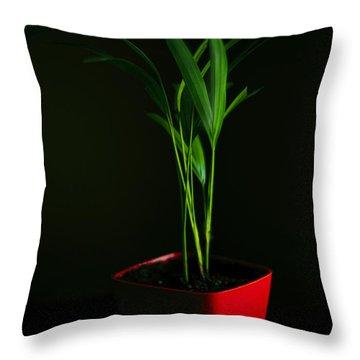Areca Palm Throw Pillow