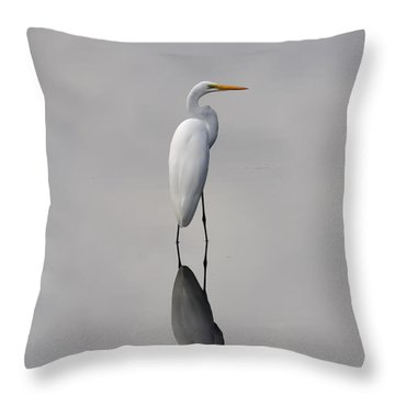 Argent Mirror Throw Pillow