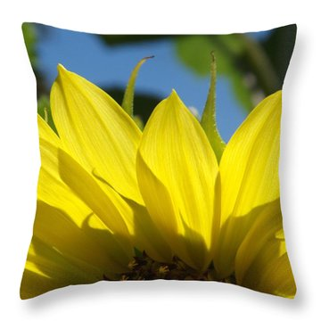 Throw Pillow featuring the photograph Arinniti by Elizabeth Sullivan