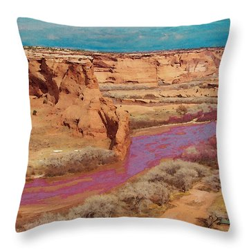 Arizona 2 Throw Pillow
