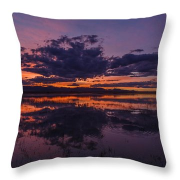 Arizona Beauty Throw Pillow by Beverly Parks