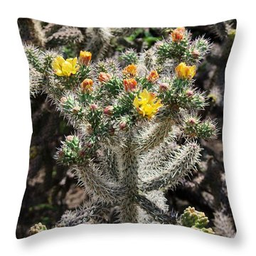Arizona Cactus Throw Pillow