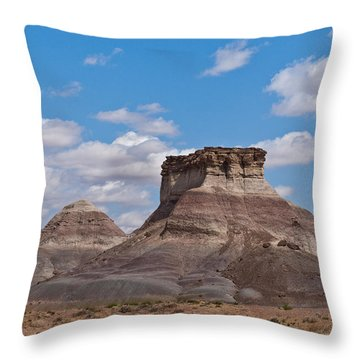 Throw Pillow featuring the photograph Arizona Desert And Mesa by Jeff Goulden