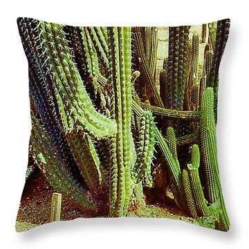 Throw Pillow featuring the photograph Arizona Desert Cactus by Merton Allen