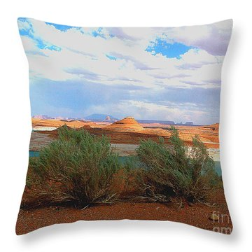 Throw Pillow featuring the photograph Arizona  Desert Landscape by Merton Allen