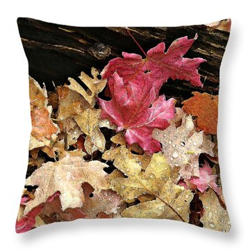 Arizona Fall Colors Throw Pillow