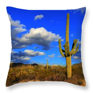 Arizona Landscape 2 Throw Pillow by Bob Christopher