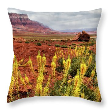 Throw Pillow featuring the photograph Arizona Landscape by Barbara Manis