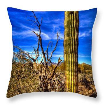 Arizona Landscape IIi Throw Pillow by David Patterson