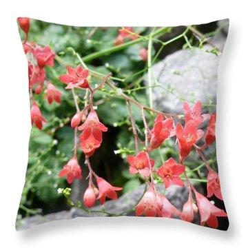 Arizona Mountain Blooms Throw Pillow