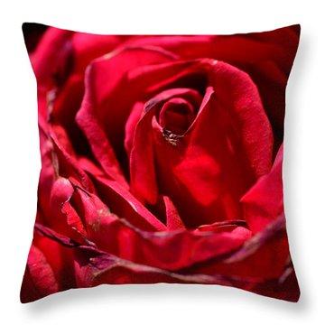 Arizona Rose I Throw Pillow