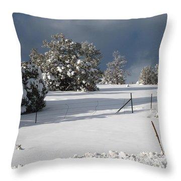 Arizona Snow 3 Throw Pillow