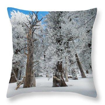 Arizona Snow Bowl Throw Pillow