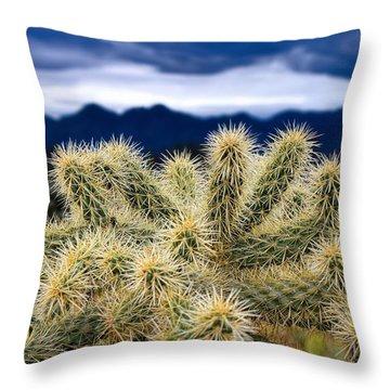 Arizona Teddy Bear Cactus Throw Pillow