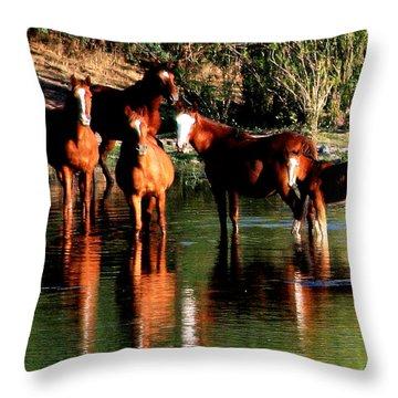 Arizona Wild Horses Throw Pillow