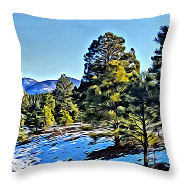 Throw Pillow featuring the photograph Arizona Winter by Beauty For God