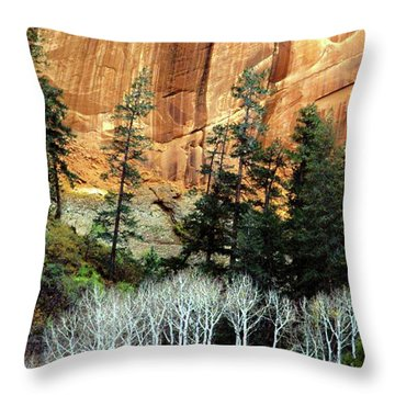 Arizona's Betatkin Aspens Throw Pillow by Ed  Riche