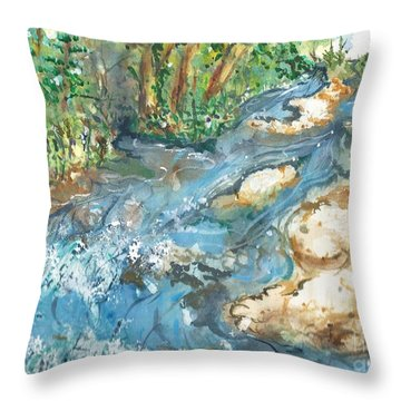 Arkansas Stream Throw Pillow