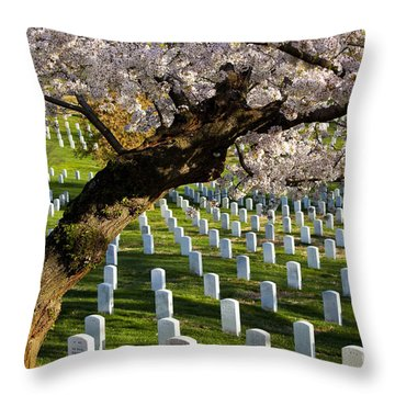 Arlington National Cemetary Throw Pillow