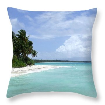 Throw Pillow featuring the photograph Arno Island by Andrea Anderegg