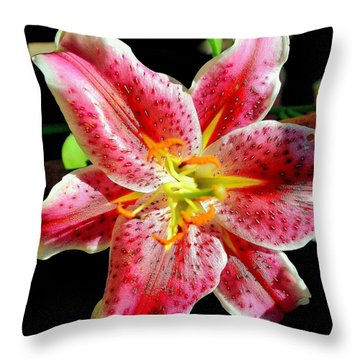 Throw Pillow featuring the photograph Aromatic Lily by Antonia Citrino