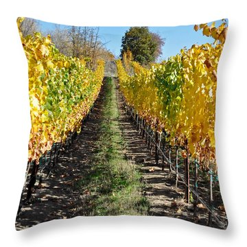 Around And About In My Neck Of The Woods Series 25 Throw Pillow