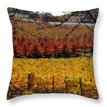 Around And About In My Neck Of The Woods Series 28 Throw Pillow