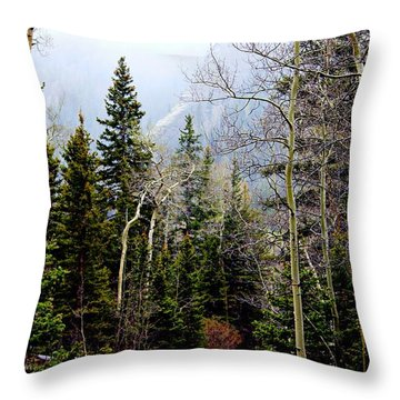 Throw Pillow featuring the photograph Around The Bend by Barbara Chichester