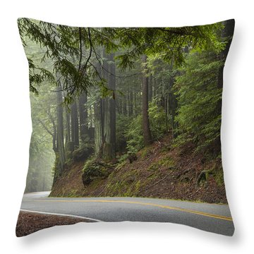 Throw Pillow featuring the photograph Around The Bend by Dustin  LeFevre