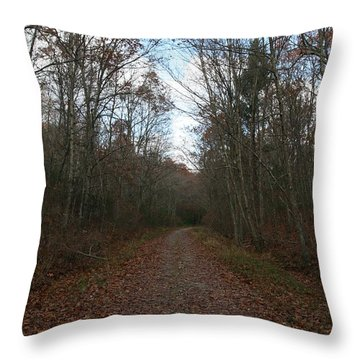 Around The Bend Throw Pillow by Neal Eslinger