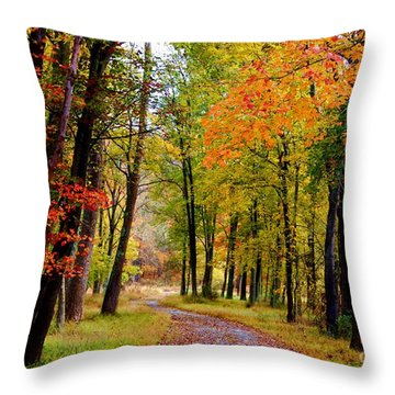 Around The Bend Throw Pillow by Patti Whitten