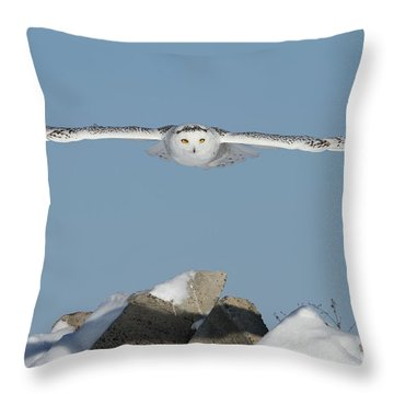 Arrival Of The Goddess Throw Pillow