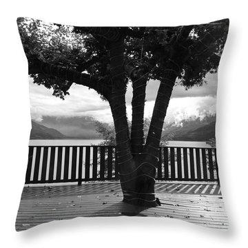Arrow Lake Throw Pillow