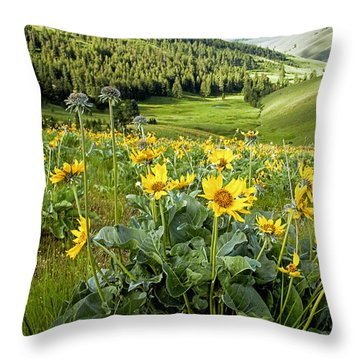 Throw Pillow featuring the photograph Arrow Leaf Balsam Root by Jack Bell