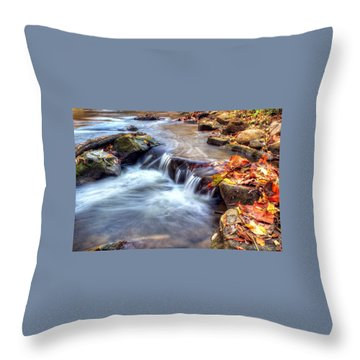 Art For Crohn's Hdr Fall Creek Throw Pillow by Tim Buisman