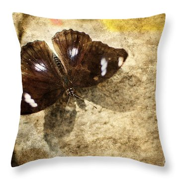 Art Number 592012 Throw Pillow by Floyd Menezes