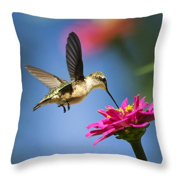 Art Of Hummingbird Flight Throw Pillow by Christina Rollo