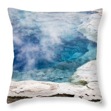 Artemisia Geyser Throw Pillow