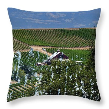 Artesa Vineyards And Winery Throw Pillow