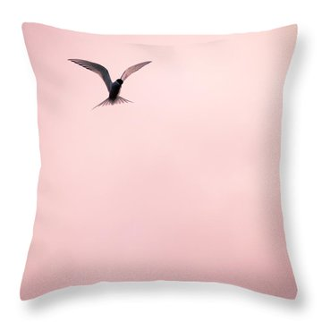 Throw Pillow featuring the photograph Artic Tern High In The Sky by Peta Thames