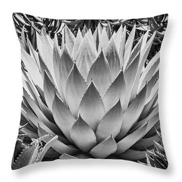 Artichoke Agave B W Throw Pillow by Kelley King