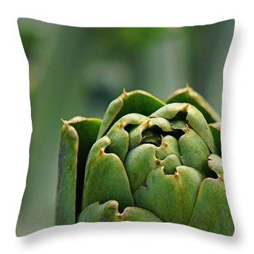 Artichoke Top Throw Pillow by Jenny Hudson