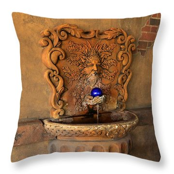 Artistic Water Fountain Throw Pillow by Bob Sample