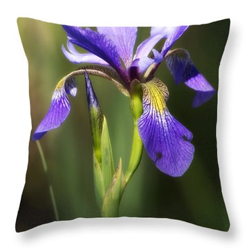 Artsy Iris Throw Pillow