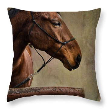 Arty Throw Pillow by Barbara Manis