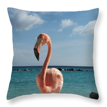 Aruba Hairy Eyeball Throw Pillow